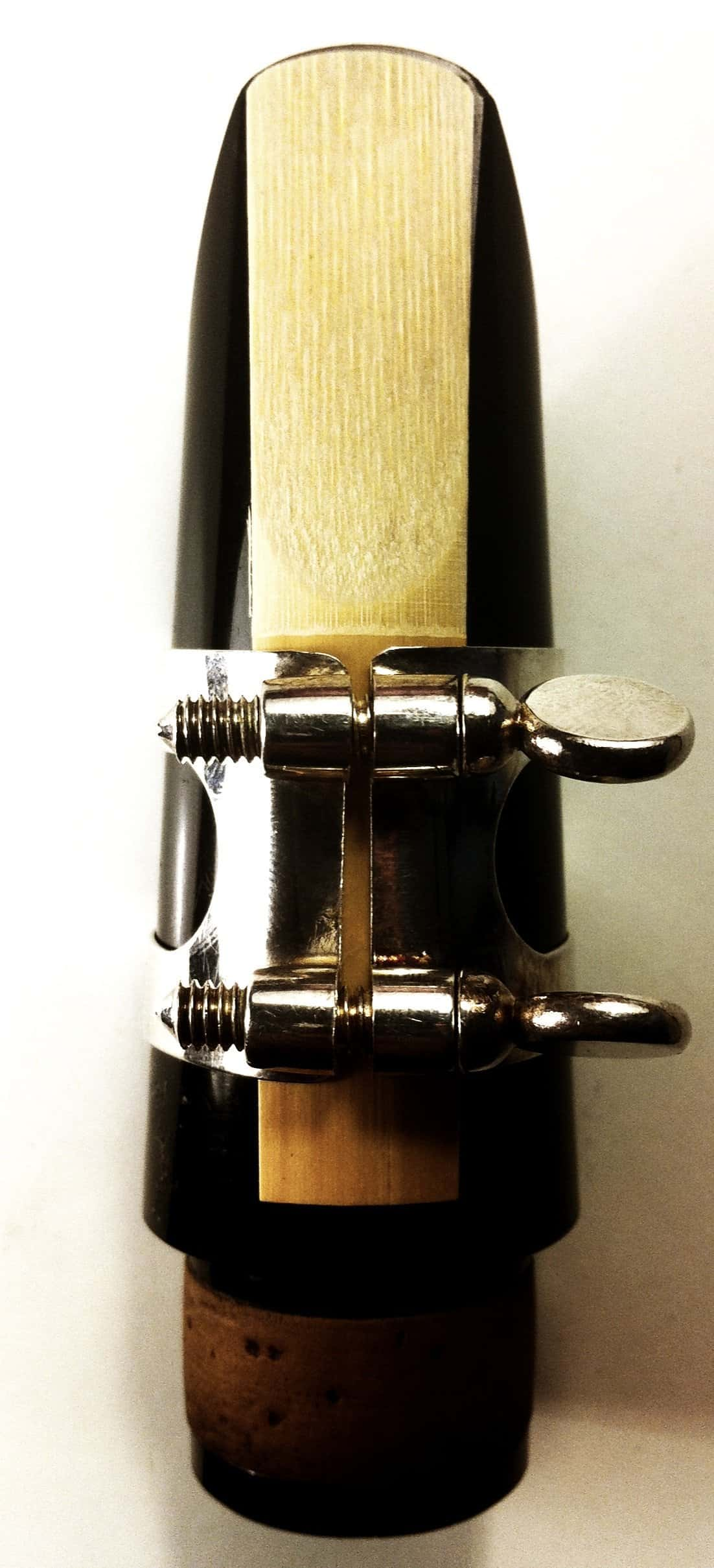How Often Should I Change My Reed? The Maggots in the Mouthpiece Story…